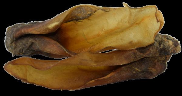 Rinder Ohren mit Muschel
