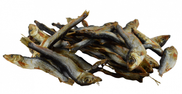 Dog fish klein ( Sprotten) 200g