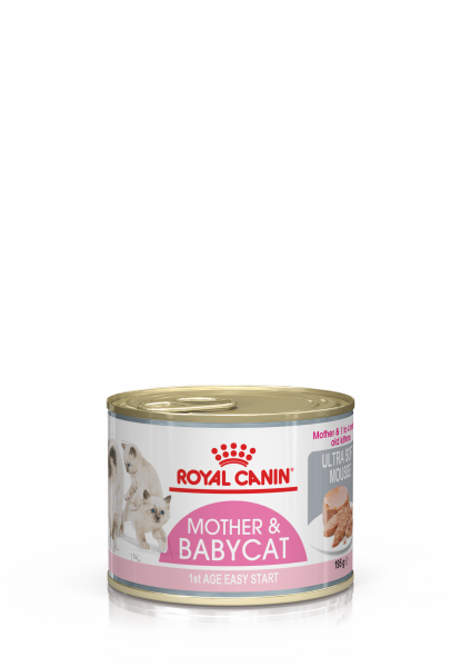 Royal Canin Mother & Babycat (Mousse) 12 x 195 g