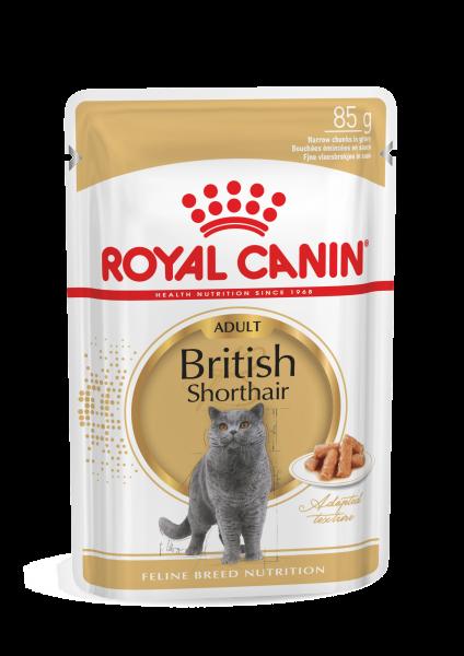 Royal Canin British Shorthair (Sauce) 12 x 85g
