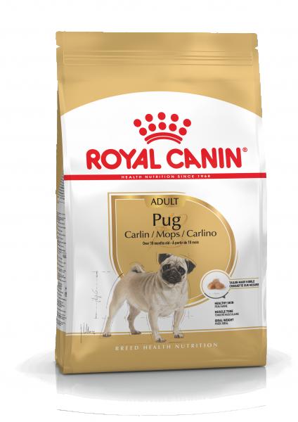 Royal Canin Mops / Carlin