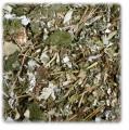 JR Farm Beeren-Blätter
